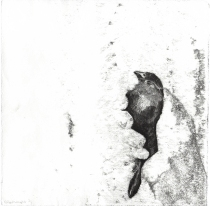 house_sparrow_held_monotype_copy