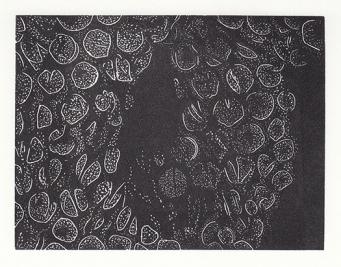 leonie-bradley-bubble-wrap